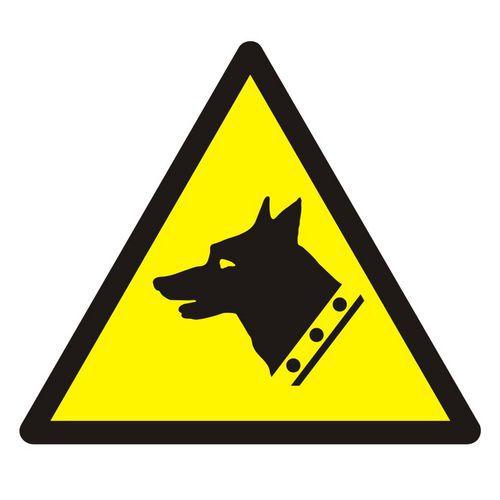 Ostrzeżenie przed złym psem